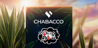 chabakko-agava-fil-i-treha.jpg